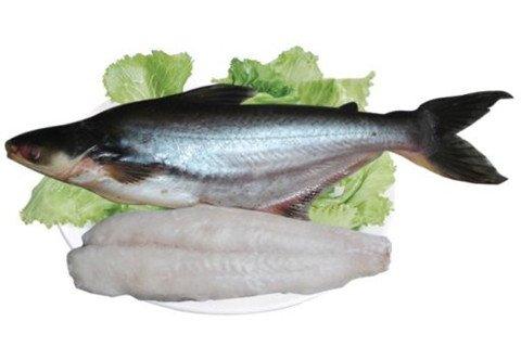 梦见捡到鱼肉块